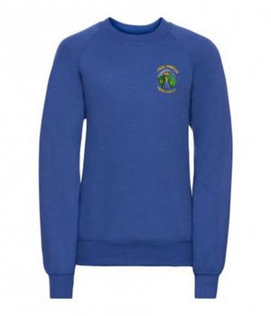 cwmllnfell school jumper.png