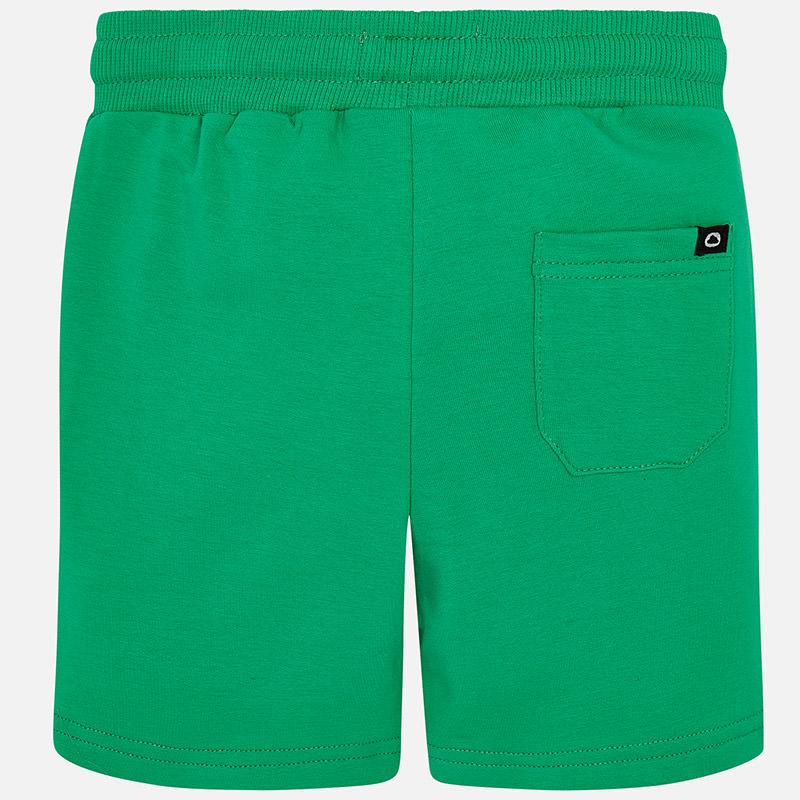 611 green back.jpg